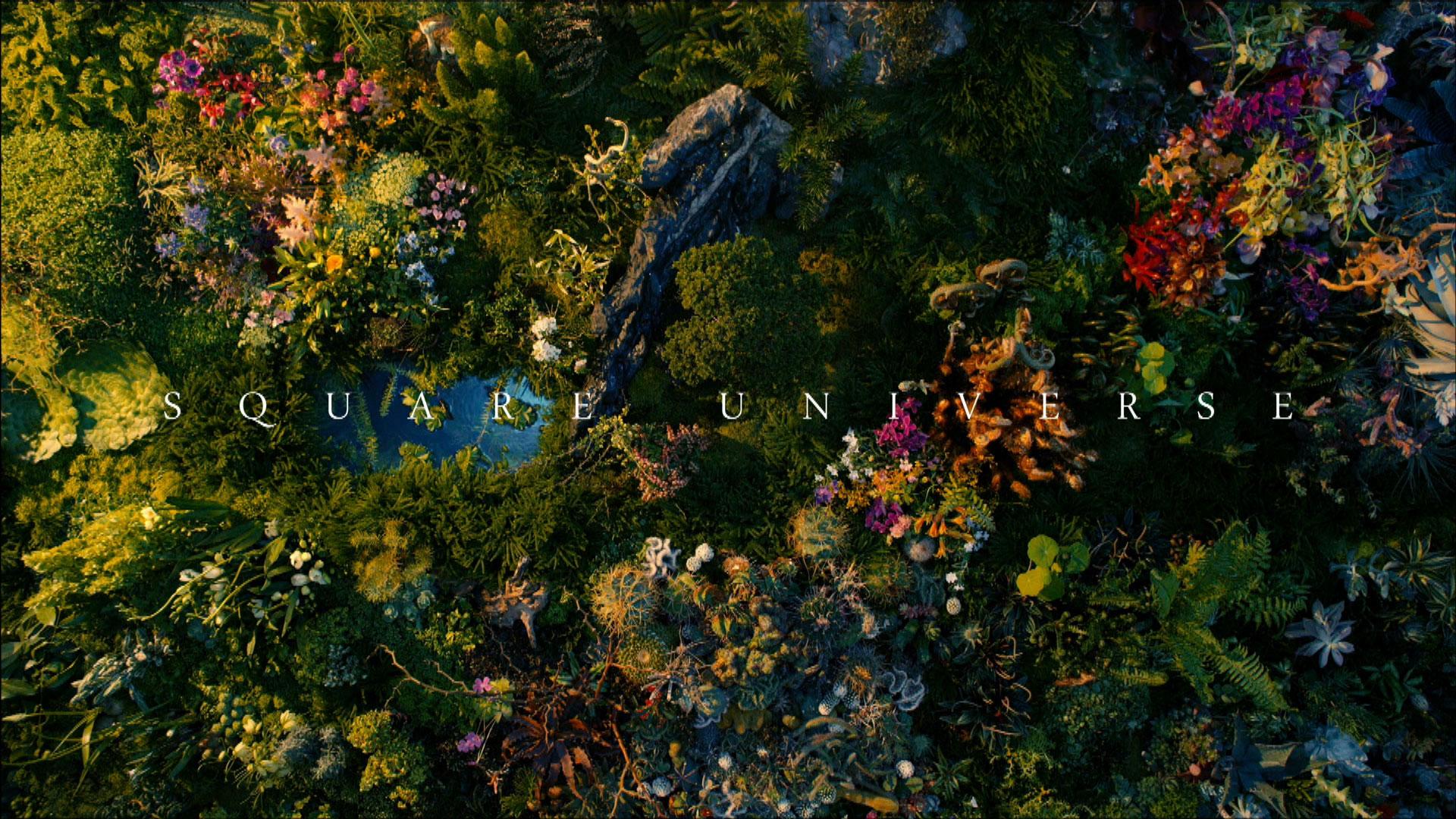 """8K """"SQUARE UNIVERSE"""""""